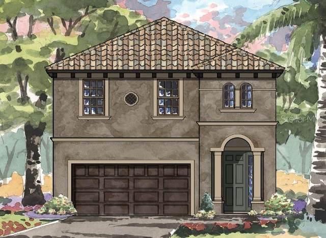 3892 Burdick Loop, Odessa, FL 33556 (MLS #T3271389) :: Team Bohannon Keller Williams, Tampa Properties