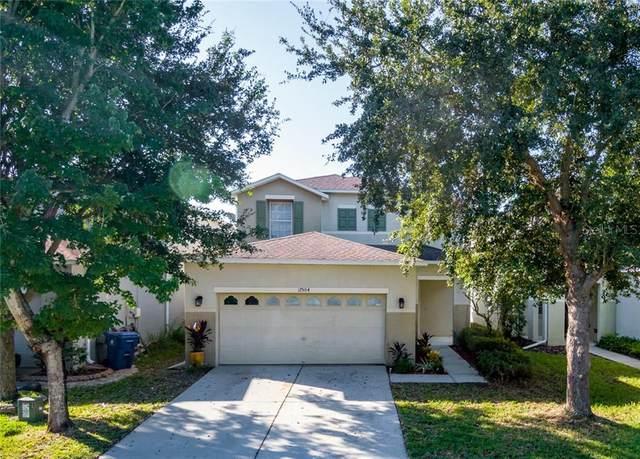 17504 Glenapp Drive, Land O Lakes, FL 34638 (MLS #T3271390) :: Team Bohannon Keller Williams, Tampa Properties