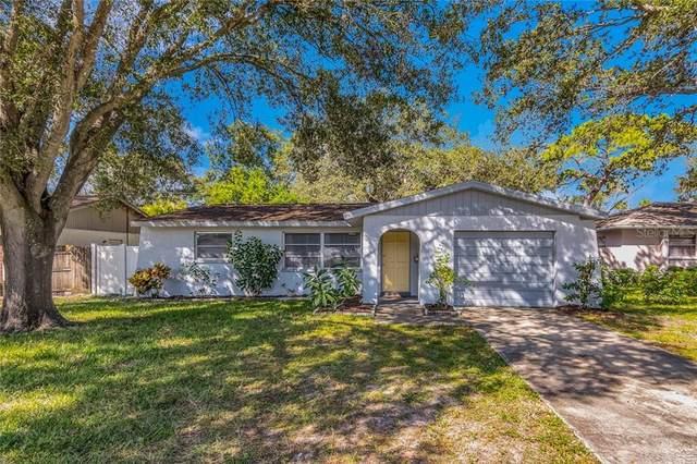 3005 Green Acres Avenue, Largo, FL 33771 (MLS #T3271408) :: Dalton Wade Real Estate Group