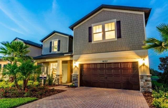 9756 Rally Spring Loop, Wesley Chapel, FL 33545 (MLS #T3271429) :: Real Estate Chicks