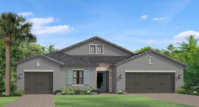 18226 Pine Hammock Boulevard, Lutz, FL 33548 (MLS #T3271443) :: Griffin Group