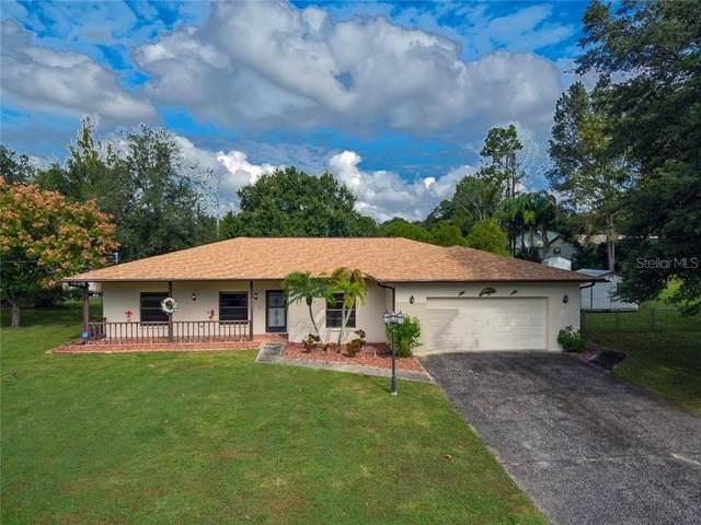 37421 Orange Valley Lane, Dade City, FL 33525 (MLS #T3271463) :: Real Estate Chicks