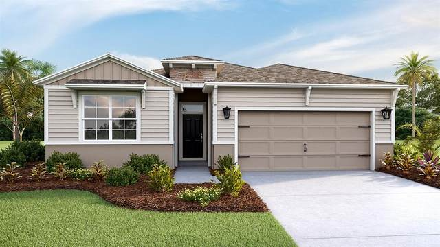 13331 Waterleaf Garden Circle, Riverview, FL 33579 (MLS #T3271490) :: Frankenstein Home Team