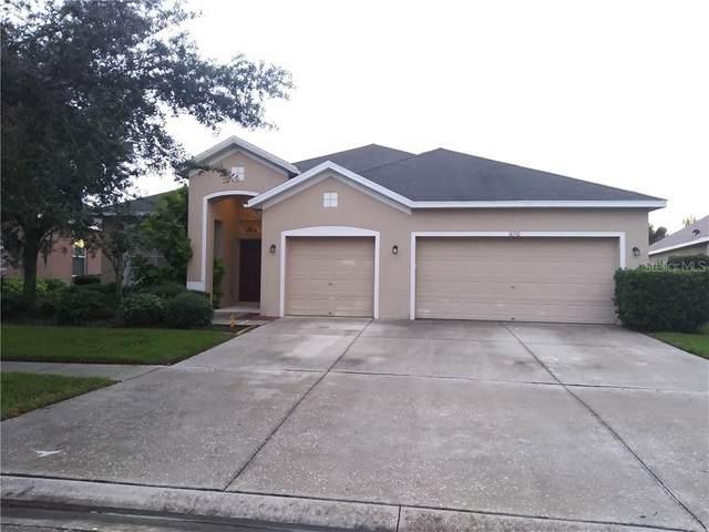16510 Bridgewalk Drive, Lithia, FL 33547 (MLS #T3271497) :: Frankenstein Home Team