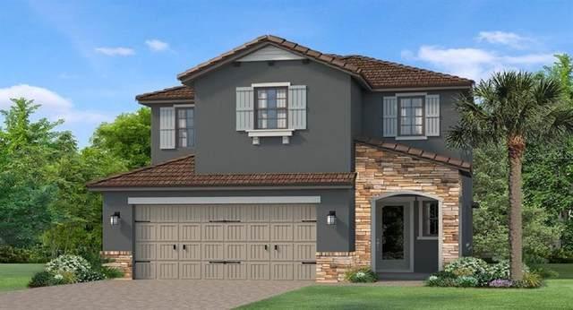 4668 San Martino Drive, Wesley Chapel, FL 33543 (MLS #T3271558) :: Your Florida House Team