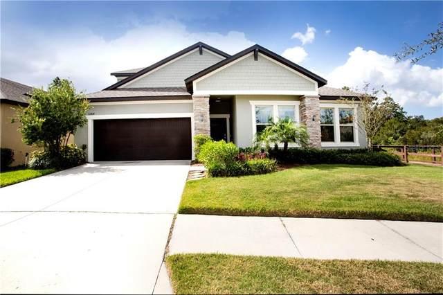 11814 Cross Vine Drive, Riverview, FL 33579 (MLS #T3271571) :: Delta Realty, Int'l.