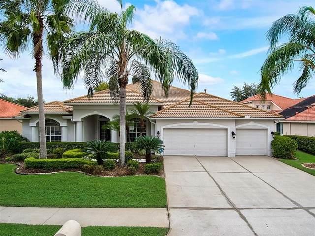10248 Estuary Drive, Tampa, FL 33647 (MLS #T3271586) :: Team Bohannon Keller Williams, Tampa Properties