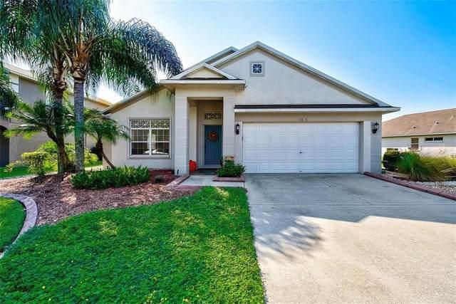 16836 Nikki Lane, Odessa, FL 33556 (MLS #T3271596) :: Griffin Group