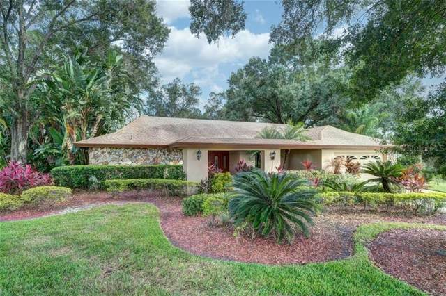 13907 Lake Bluff Court, Tampa, FL 33624 (MLS #T3271609) :: The Duncan Duo Team