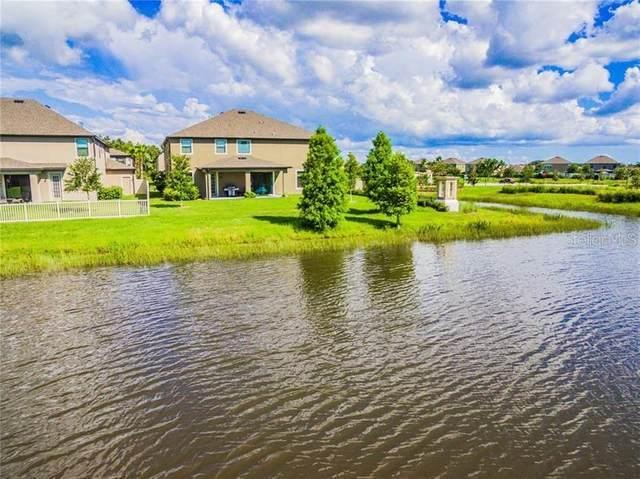 10702 Laurel Vista Way #1, Tampa, FL 33647 (MLS #T3271621) :: Dalton Wade Real Estate Group