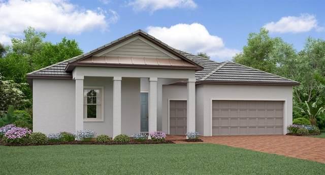 31548 Cabana Rye Avenue, San Antonio, FL 33576 (MLS #T3271636) :: Pepine Realty