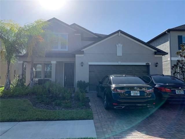 6237 English Hollow Road, Tampa, FL 33647 (MLS #T3271677) :: Team Bohannon Keller Williams, Tampa Properties