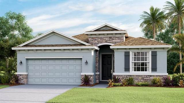 16446 Woodside Glen, Parrish, FL 34219 (MLS #T3271731) :: Alpha Equity Team