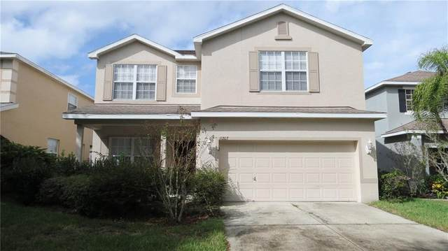 11207 Creek Haven Drive, Riverview, FL 33569 (MLS #T3271746) :: Frankenstein Home Team