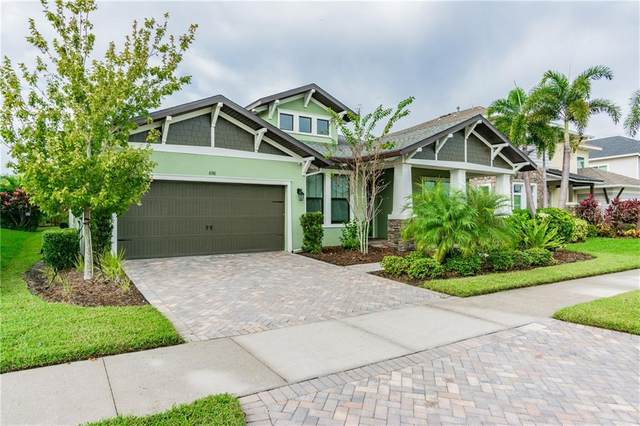 6516 Mayport Drive, Apollo Beach, FL 33572 (MLS #T3271780) :: Frankenstein Home Team