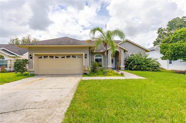 6403 Silver Oaks Drive, Zephyrhills, FL 33542 (MLS #T3271819) :: Bridge Realty Group