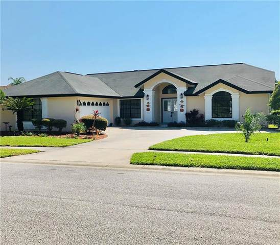 8526 Caitlin Court, Bayonet Point, FL 34667 (MLS #T3271831) :: Griffin Group