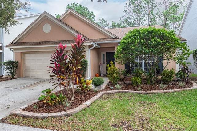 9403 Willow Cove Court, Tampa, FL 33647 (MLS #T3271845) :: Globalwide Realty