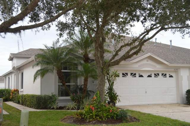 30140 Emmetts Court, Wesley Chapel, FL 33543 (MLS #T3271864) :: Frankenstein Home Team