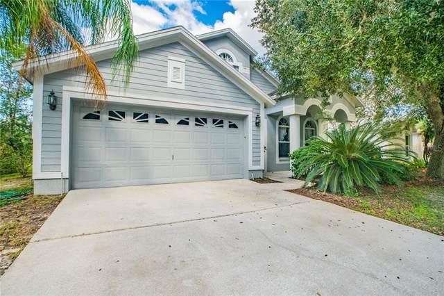 10118 Arbor Run Drive, Tampa, FL 33647 (MLS #T3271896) :: Cartwright Realty
