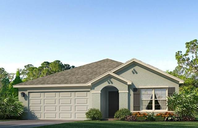 2704 Greenleaf Terrace, Parrish, FL 34219 (MLS #T3271911) :: Alpha Equity Team