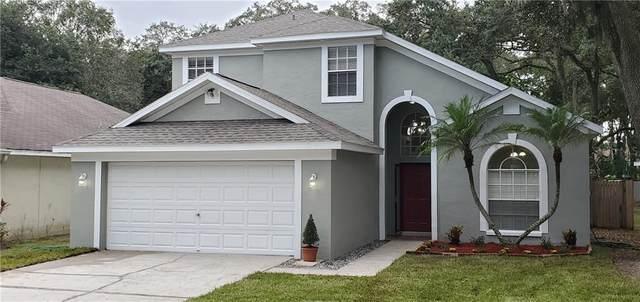 4616 Whispering Park Lane, Tampa, FL 33614 (MLS #T3271934) :: Cartwright Realty