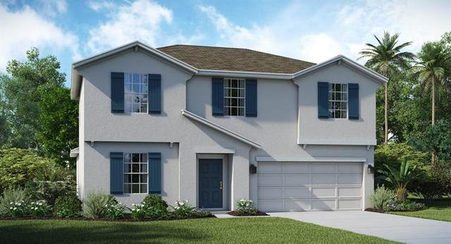16472 Fernridge Street, Clermont, FL 34714 (MLS #T3271940) :: Carmena and Associates Realty Group