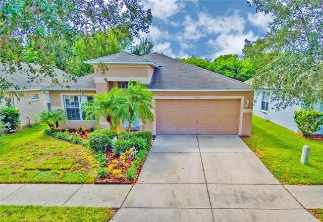 1611 Carson White Lane, Ruskin, FL 33570 (MLS #T3271954) :: Frankenstein Home Team