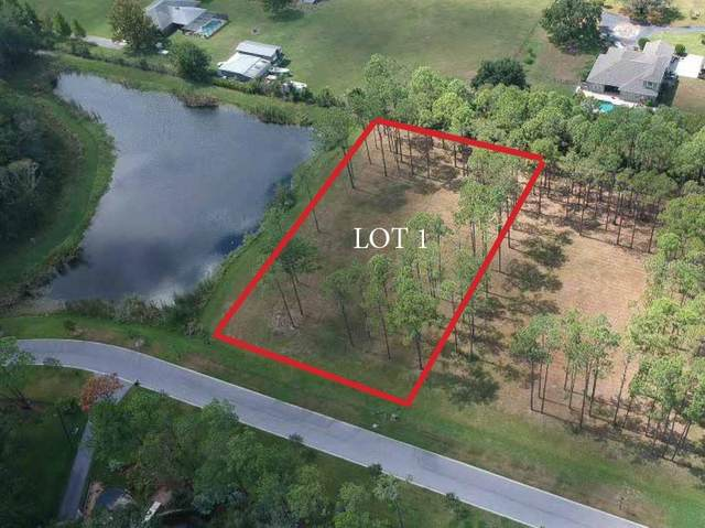 16126 Carencia Lane, Odessa, FL 33556 (MLS #T3271972) :: Griffin Group