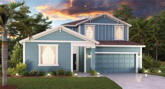 5479 Limestone Street, Mount Dora, FL 32757 (MLS #T3272013) :: EXIT King Realty