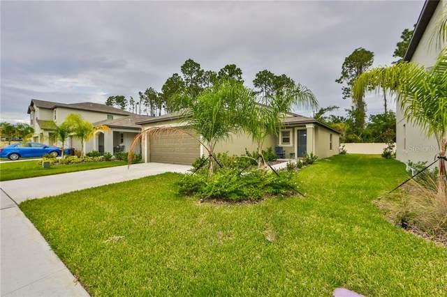 7074 Emerald Spring Loop, New Port Richey, FL 34653 (MLS #T3272016) :: MavRealty