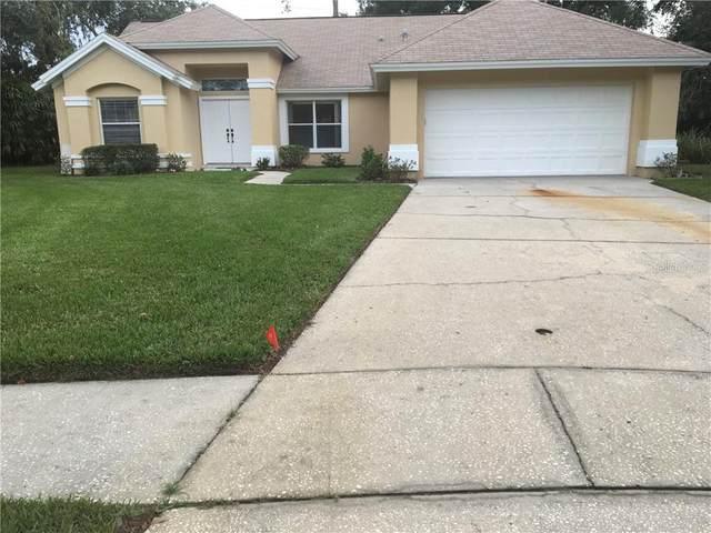 16102 Canton Court, Tampa, FL 33647 (MLS #T3272060) :: MavRealty