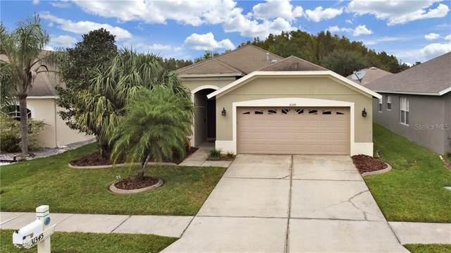31345 Philmar Lane, Wesley Chapel, FL 33543 (MLS #T3272064) :: Team Bohannon Keller Williams, Tampa Properties