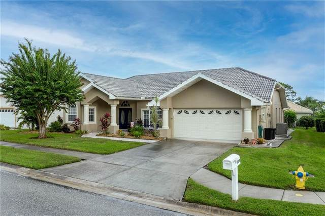 8909 Helmsly Lane, Hudson, FL 34667 (MLS #T3272086) :: McConnell and Associates