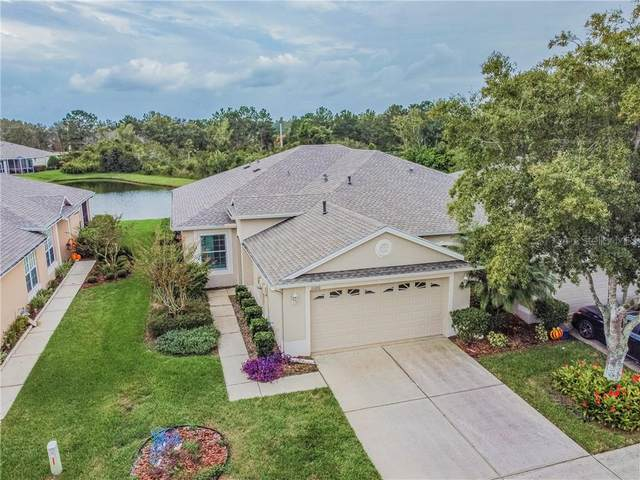 31100 Whitlock Drive, Wesley Chapel, FL 33543 (MLS #T3272145) :: Team Bohannon Keller Williams, Tampa Properties