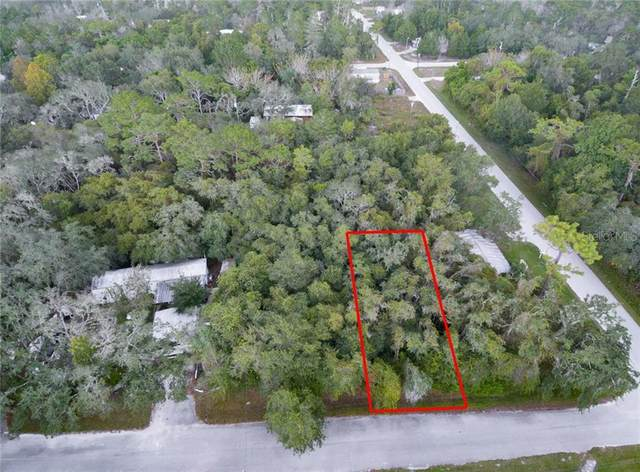 10042 Orland Street, New Port Richey, FL 34654 (MLS #T3272167) :: The Duncan Duo Team