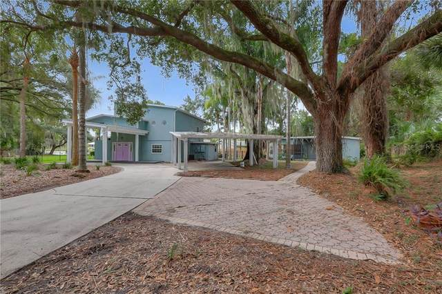 14013 Lake Magdalene Boulevard, Tampa, FL 33618 (MLS #T3272182) :: Team Bohannon Keller Williams, Tampa Properties
