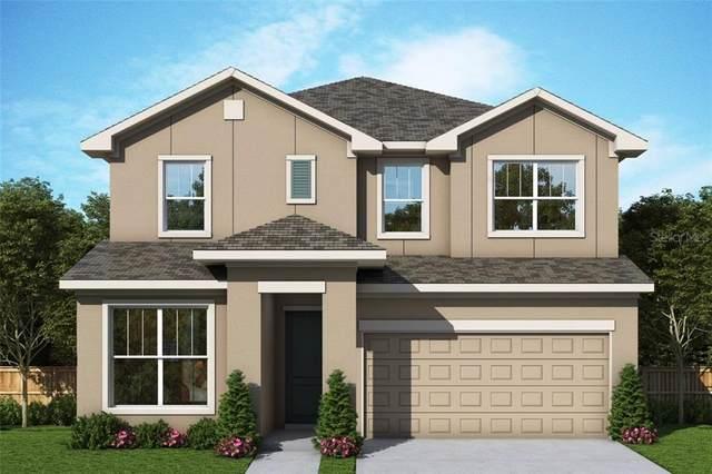 4900 20TH Street N, St Petersburg, FL 33714 (MLS #T3272184) :: Bustamante Real Estate