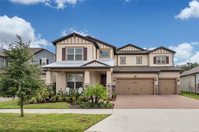 18781 Birchwood Groves Drive, Lutz, FL 33558 (MLS #T3272201) :: Griffin Group
