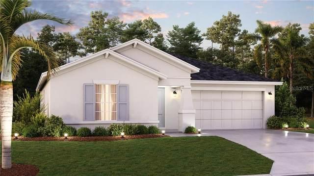 3830 Guernsey Bend, Saint Cloud, FL 34772 (MLS #T3272205) :: Sarasota Home Specialists