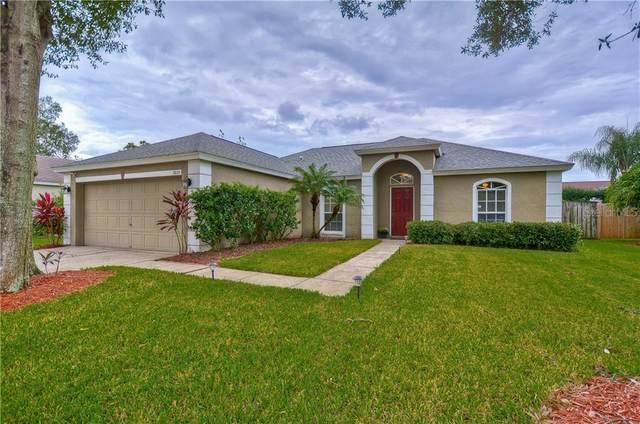 5805 Black Walnut Court, Tampa, FL 33625 (MLS #T3272206) :: Team Bohannon Keller Williams, Tampa Properties