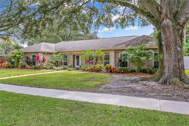 1202 Beacon Hill Drive, Tampa, FL 33613 (MLS #T3272238) :: Pristine Properties