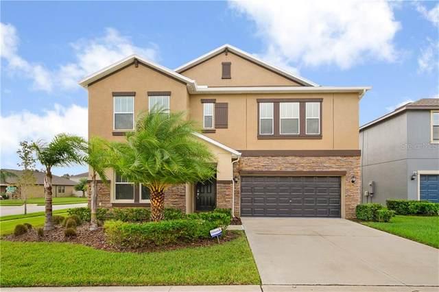11029 Purple Martin Boulevard, Riverview, FL 33579 (MLS #T3272243) :: Globalwide Realty