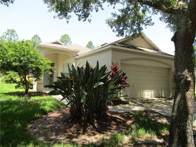 6140 Kiteridge Drive, Lithia, FL 33547 (MLS #T3272245) :: Frankenstein Home Team