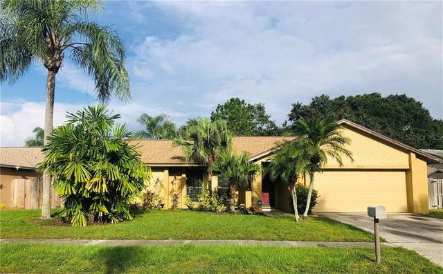6525 Seafairer Drive, Tampa, FL 33615 (MLS #T3272265) :: Frankenstein Home Team