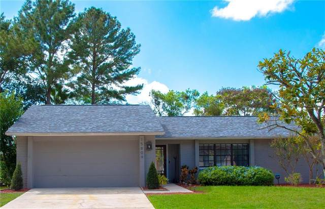 15809 Hound Horn Lane, Tampa, FL 33624 (MLS #T3272282) :: Griffin Group