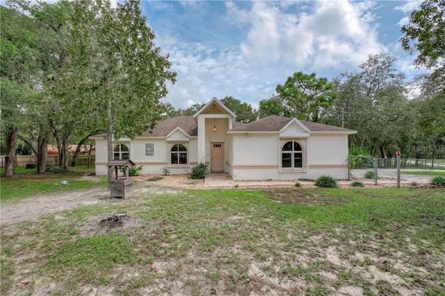 16243 Eagle View Drive, Spring Hill, FL 34610 (MLS #T3272285) :: Real Estate Chicks