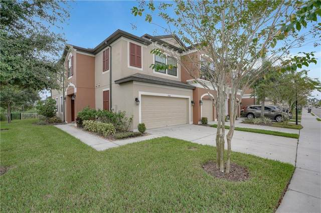 9106 Fox Sparrow Road, Tampa, FL 33626 (MLS #T3272289) :: Griffin Group