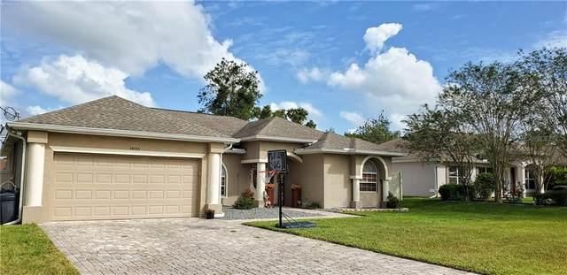 14155 Prospect Street, Spring Hill, FL 34609 (MLS #T3272291) :: The Duncan Duo Team