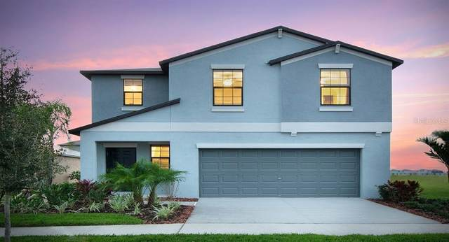 839 Olive Conch Street NW, Ruskin, FL 33570 (MLS #T3272338) :: Griffin Group